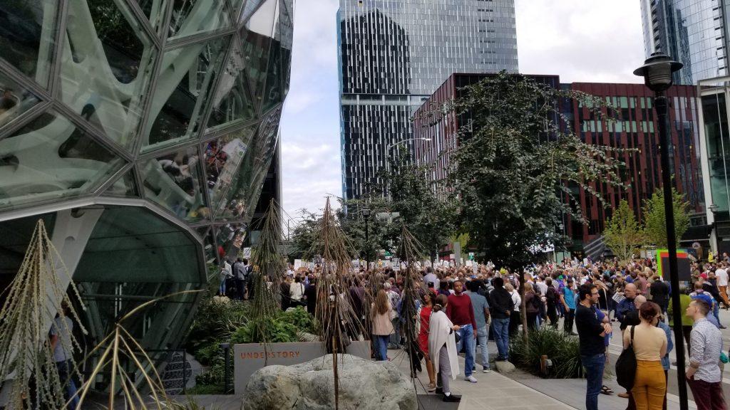 Crowd of protestors